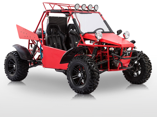 Bms V Twin Buggy 800cc 4 215 4 Get The Max Out Of Life